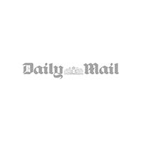 daily-mail-logogray